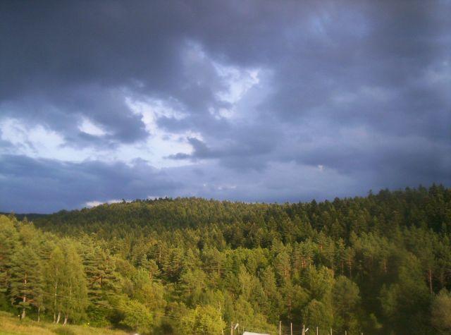 Zdjęcia: Zdynia, Beskid Niski, Dwa kolory, POLSKA