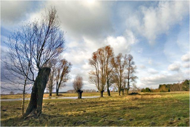 Zdjęcia: okolice Kotunia, podlasie, Podlaskie klimaty 4, POLSKA