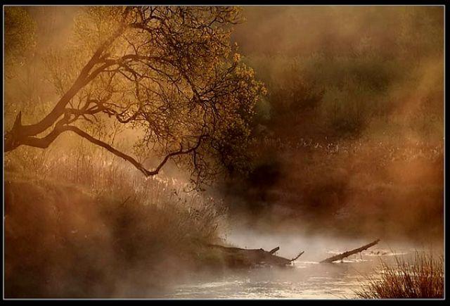 Zdjęcia: Śląsk-Rybnik, imagine..., POLSKA