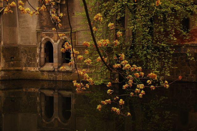 Zdjęcia: Kopice, Opolszczyzna, Fragment zamku w Kopicach - skąpany w wodzie obiekt z marzeń tych co w obłokach bujają :), POLSKA