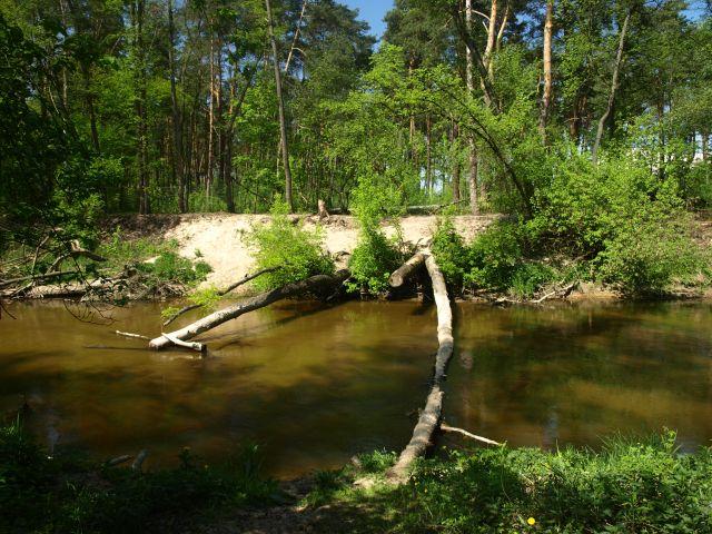 """Zdjęcia: Ścieżka rowerowa - szlak niebieski, MPK, """"przeprawa"""" czy co?, POLSKA"""