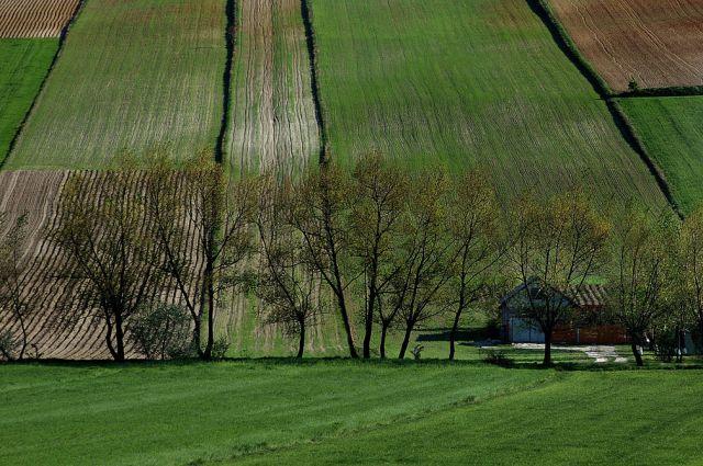 Zdjęcia: okolice Miechowa, małopolska, nasza wieś- część II, POLSKA