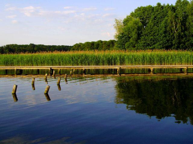 Zdjęcia: okolice Sławy, Nad jeziorem II, POLSKA