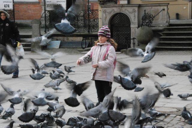 Zdj�cia: Star�wka, Gda�sk, Na spacerze, POLSKA