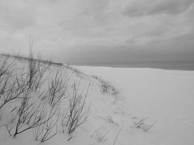 Zdjęcia: Plaża w Oliwie, Pomorskie, Wydmy w śniegu, POLSKA