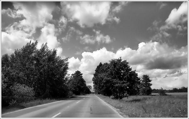 Zdjęcia: MIĘDZY WROCŁAWIEM A KOTOWICAMI, dolnyśląsk, NA TRASIE, POLSKA