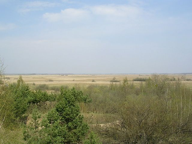 Zdjęcia: Bagna Biebrzańskie/ Bagno Ławki, podlaskie, królestwo przyrody-  mój biebrzański ptasi  raj, POLSKA