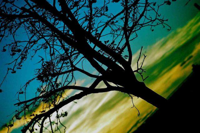 Zdjęcia: mazowsze, kolory nieba, POLSKA