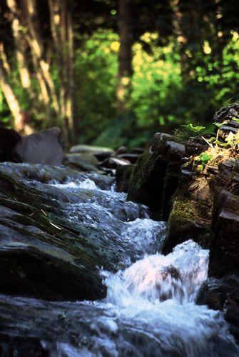 Zdjęcia: potok hyrlaty, bieszczady, potoczek, POLSKA