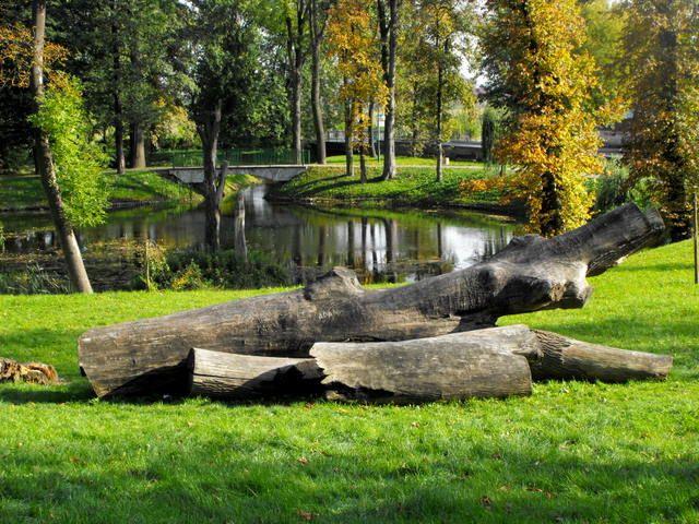 Zdjęcia: park, Kozienice, jesień w Kozienicach, POLSKA