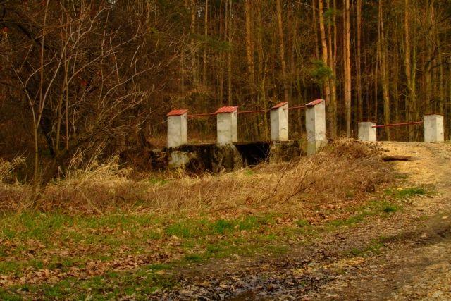 Zdjęcia: Ptasi gaj, nizina śląska, mostek, POLSKA