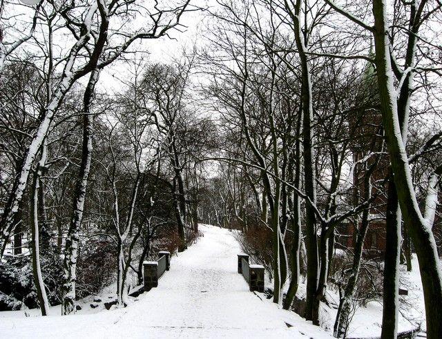 Zdjęcia: Stargard, Zachodniopomorskie, Aleja Słowicza w Parku Chrobrego, POLSKA