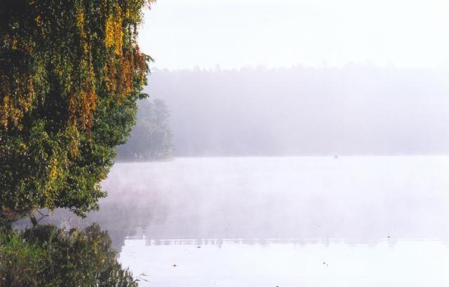 Zdjęcia: Jezioro Nidzkie, Mazury, Poranna mgła , POLSKA