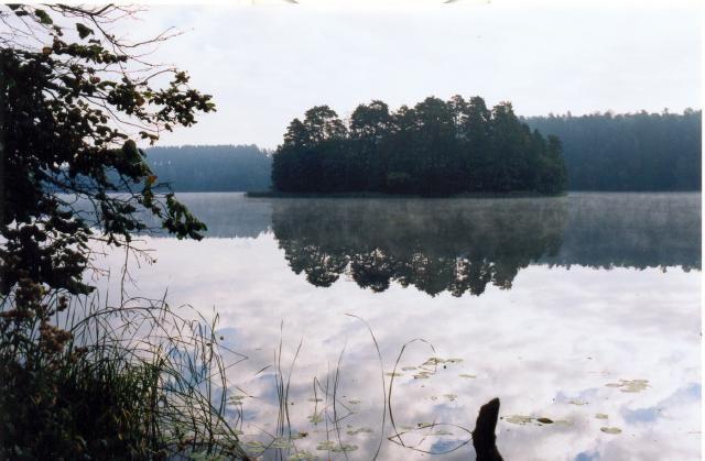 Zdjęcia: Jezioro NIdzkie, Mazury, Poranek nad jeziorem, POLSKA