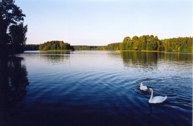 Zdj�cia: Jezioro Nidzkie, Mazury, Pi�kno Mazur, POLSKA