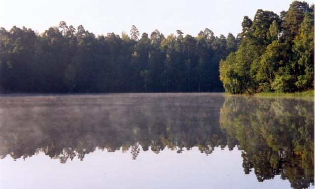 Zdjęcia: Mazury, Mazury, Las i woda, POLSKA