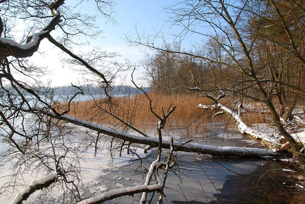 Zdjęcia: Jezioro Sajno, Augustowszczyzna, Jezioro Sajno zima, POLSKA