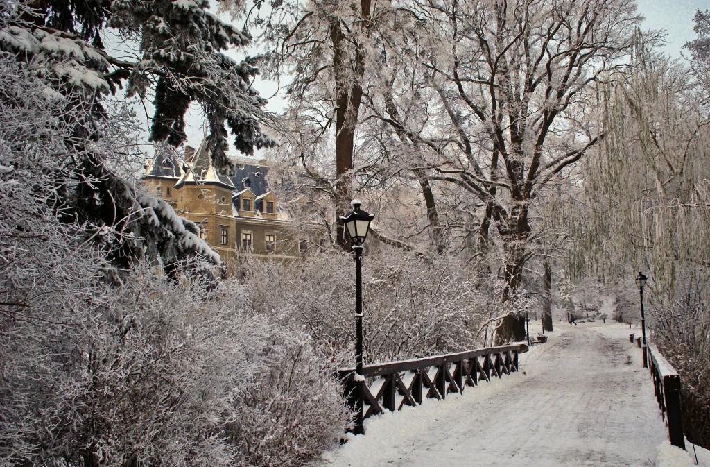 Zdjęcia: Gołuchów, WIELKOPOLSKA, Zima w Gołuchowie, POLSKA