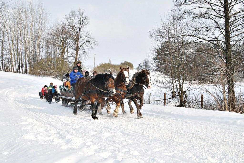Zdjęcia: Kurianki, Augustowszczyzna, Wesolych Swiat, POLSKA