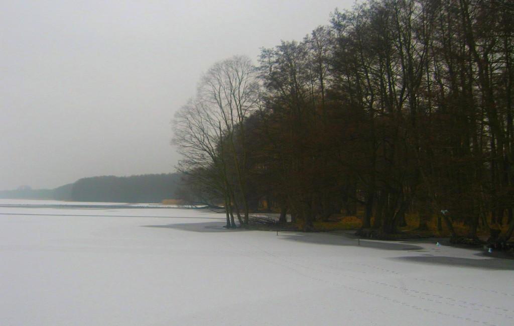 Zdjęcia: Jezioro Miedwie - Morzyczyn, zachodniopomorskie,  zimowa nostalgia miedwiańskiego jeziora, POLSKA