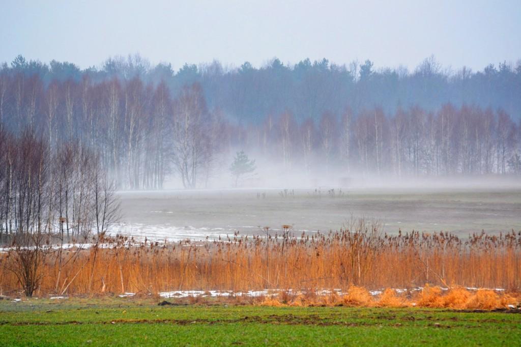Zdjęcia: Mienia, Mazowieckie, Odchodząca zima, POLSKA