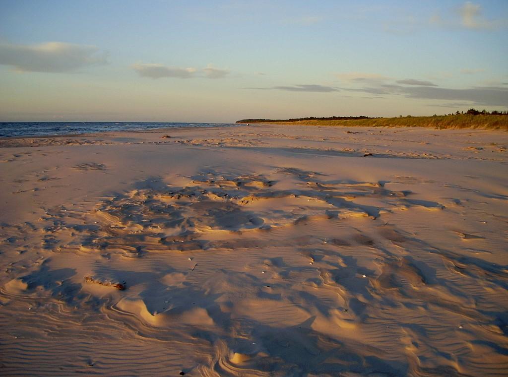 Zdjęcia: Białogóra, Kaszuby, dlaczego wszyscy kochamy plaże?, POLSKA
