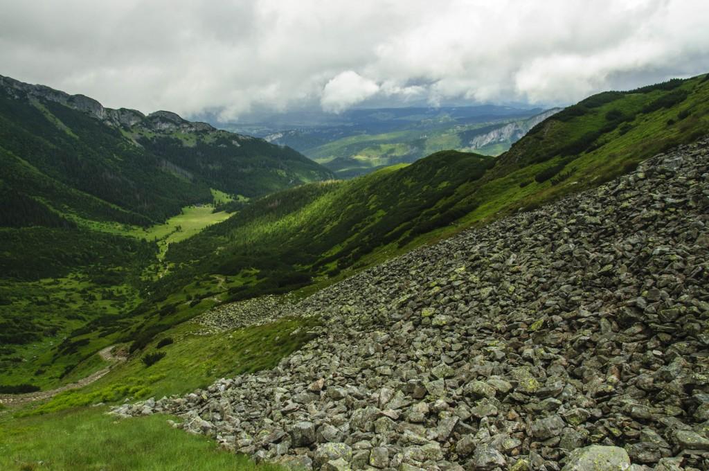 Zdjęcia: Zielony szlak na Przełęcz pod Kopą Kondracką, Tatry Zachodnie, Dolina Kondratowa, POLSKA
