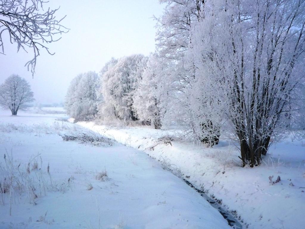 Zdjęcia: Posiadały, Mazowieckie, Zimowe krajobrazy, POLSKA