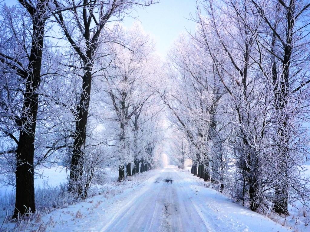 Zdjęcia: Posiadały, Mazowieckie, Na zimowo, POLSKA