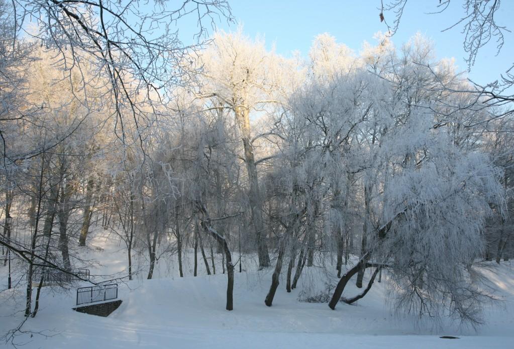 Zdjęcia: Gdańsk, Pomorze, Park Oruński w bieli, POLSKA
