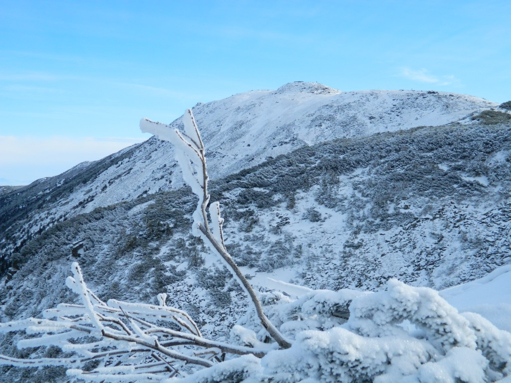 Zdjęcia: widok na Babią z przełęczy Brona, Beskid, BABIA Góra 2014, POLSKA