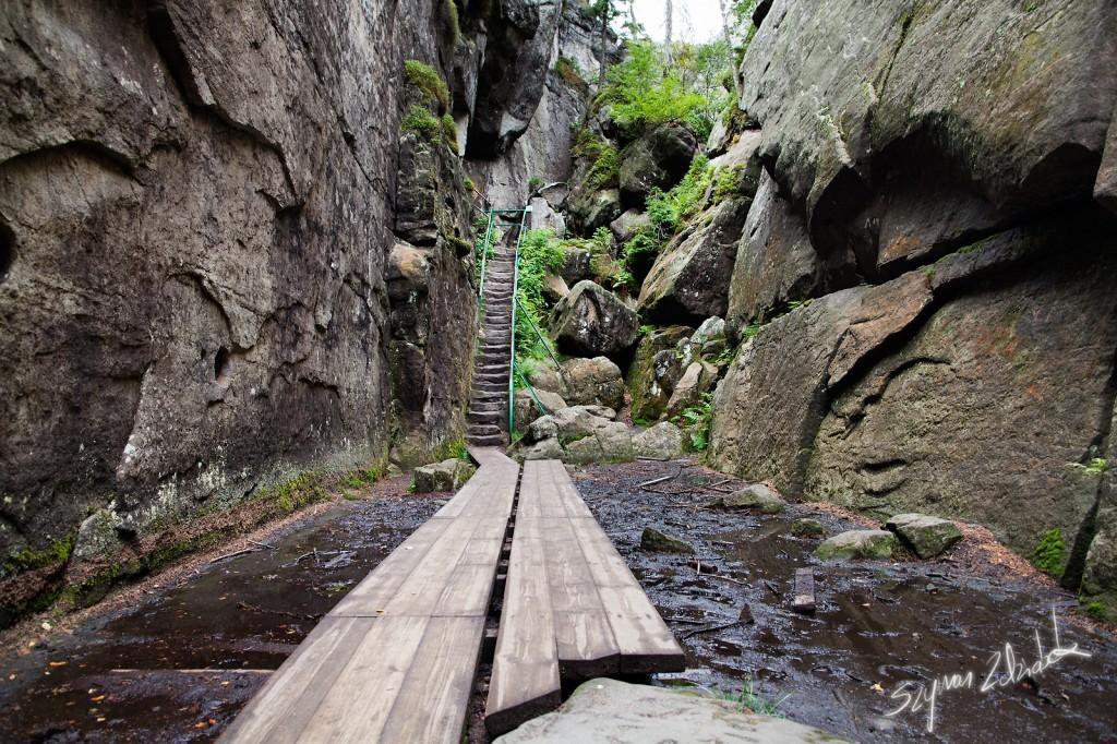 Zdjęcia: Góry Stołowe, Szczeliniec Wielki, POLSKA