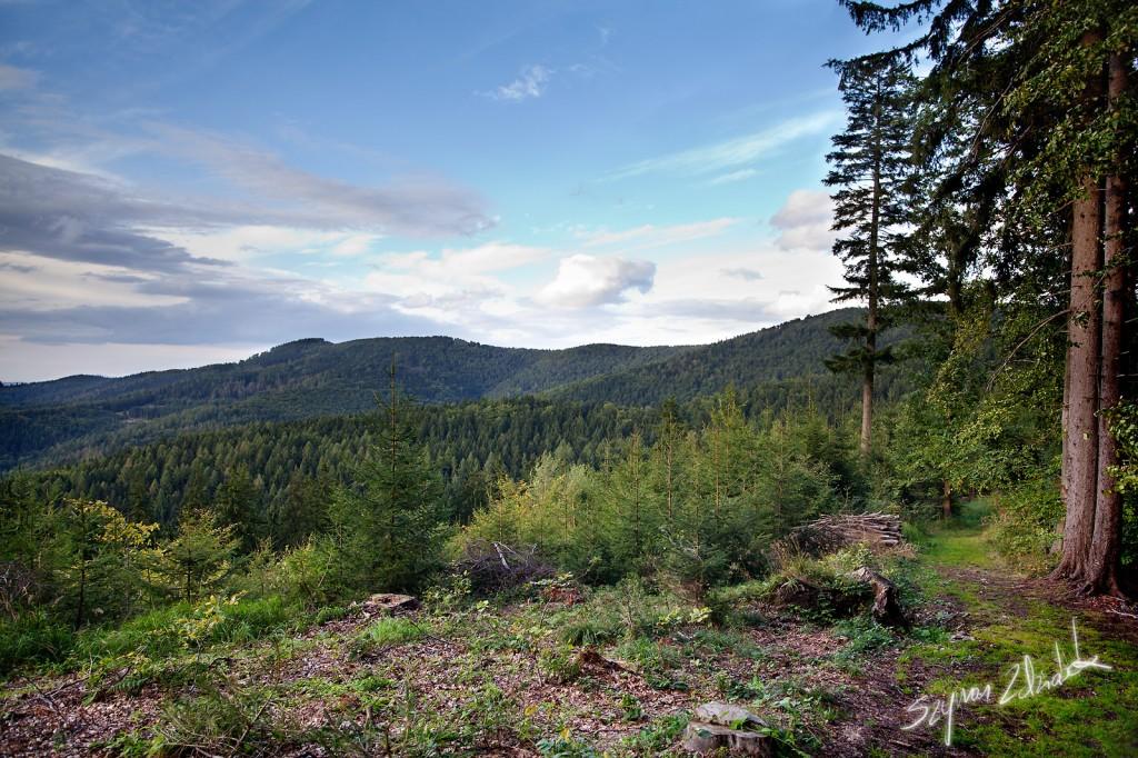 Zdjęcia: Góry Bardzkie, Kłodzka Góra, POLSKA