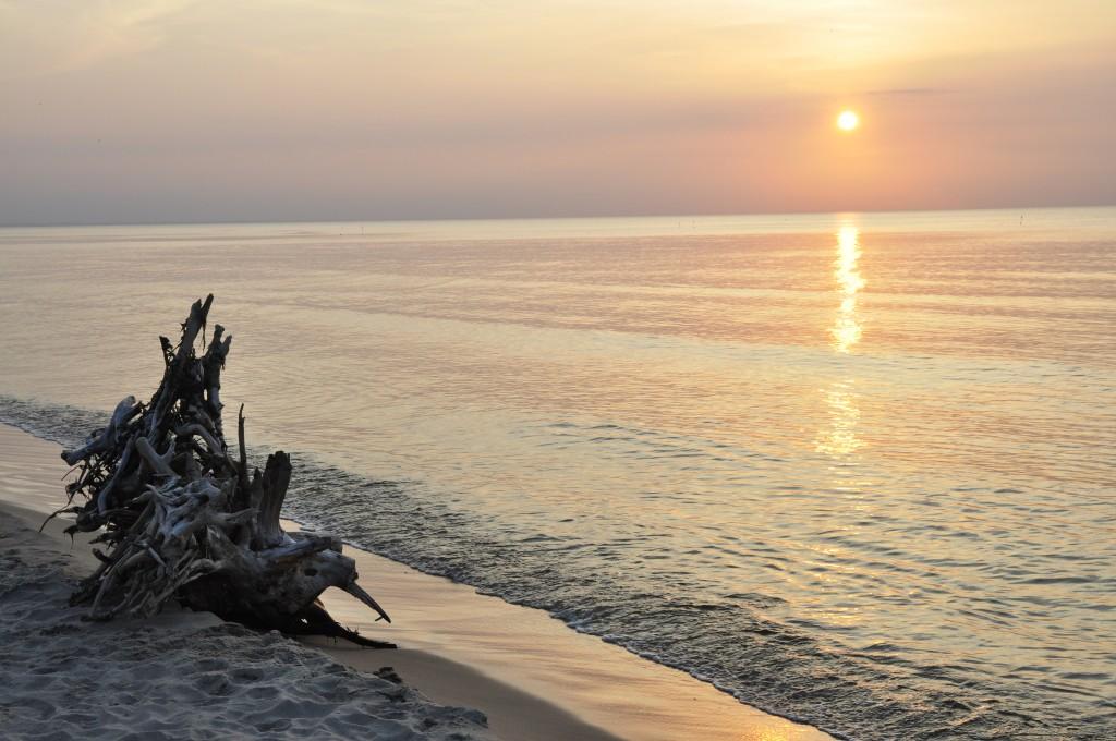 Zdjęcia: Stegna, Morze Bałtyckie, konkurs, POLSKA