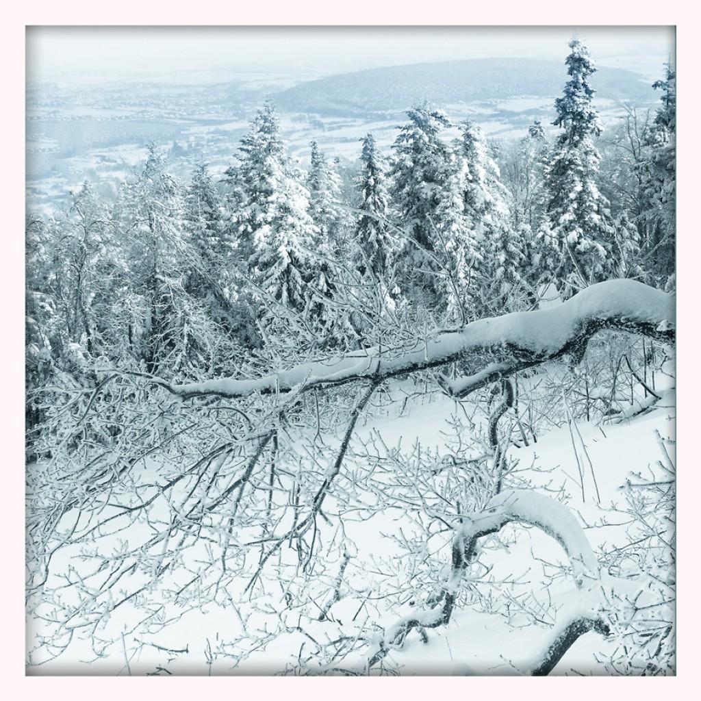 Zdjęcia: Góry Świętokrzyskie, Świętokrzyskie, Zdjęcie 3, POLSKA