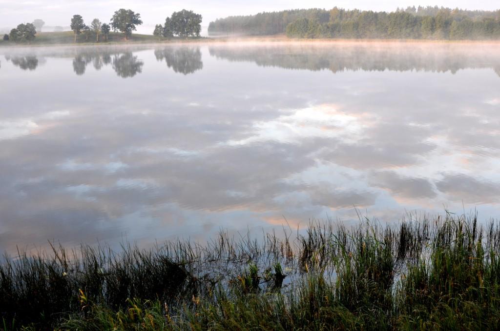 Zdjęcia: Wdzydzki Park Krajobrazowy, szlak Wdy, Nad jeziorem, POLSKA