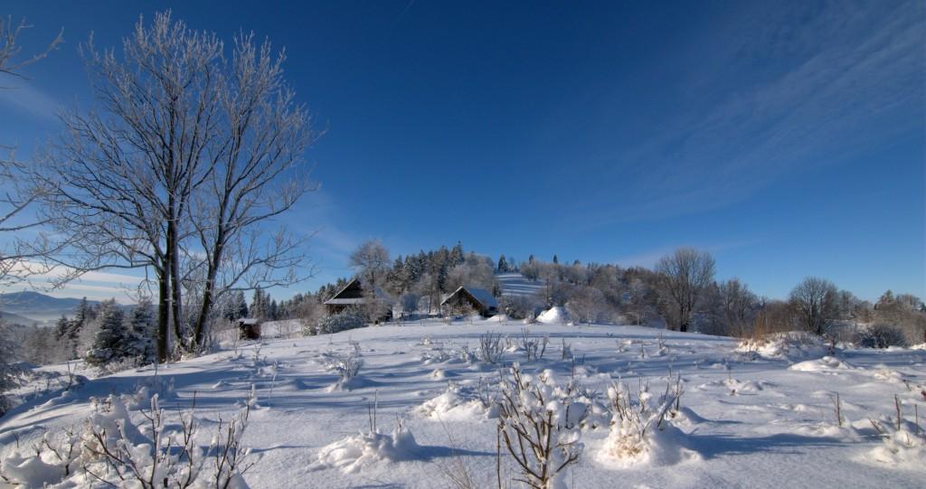 Zdjęcia: Hala Gibasy, Beskid Mały, Zima w Beskidzie Małym, POLSKA