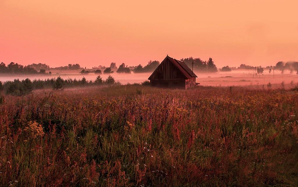 Zdjęcia: Puszcza Borecka, Warmińsko-Mazurskie, Dom nad łąkami, POLSKA