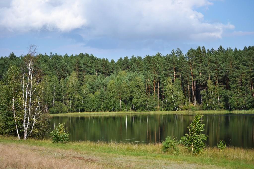 Zdjęcia: Kazuby, północna Polska, Kazuby, POLSKA