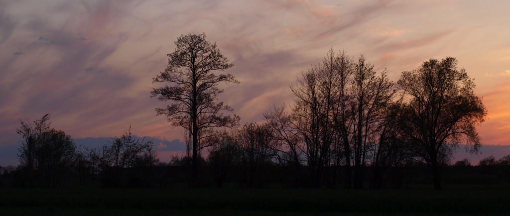 Zdjęcia: Brenno, Wielkopolska, noc prawie, POLSKA