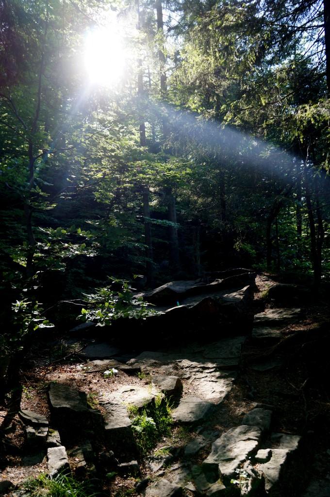 Zdjęcia: Beskid Śląski, śląskie, Dolina Białej Wisełki, POLSKA