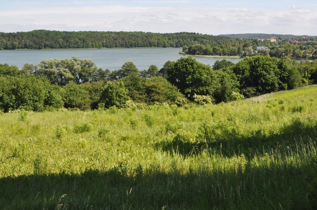 Zdjęcia: okolice Mrągowa, Mazury, Widok na Jezioro Juno, POLSKA