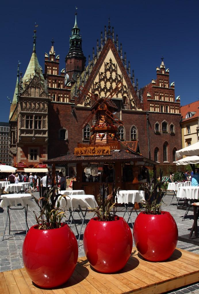 Zdjęcia: Wrocław, Dolnośląskie, Pomidorki przed Ratuszem, POLSKA