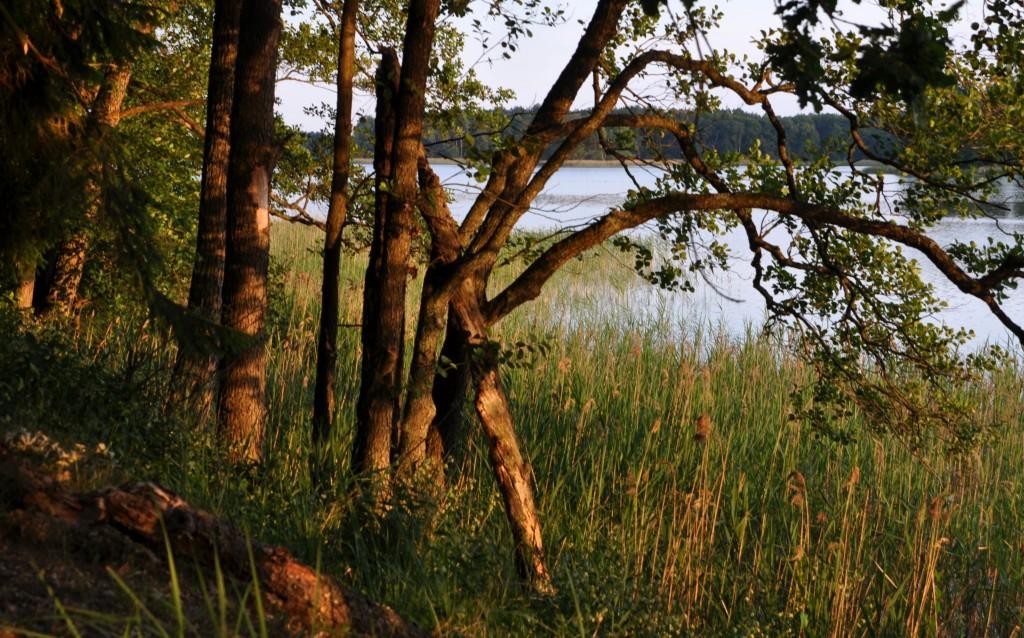 Zdjęcia: Jezioro Zdrużno, Mazury, Wieczór nad Jeziorem Zdrużno, POLSKA