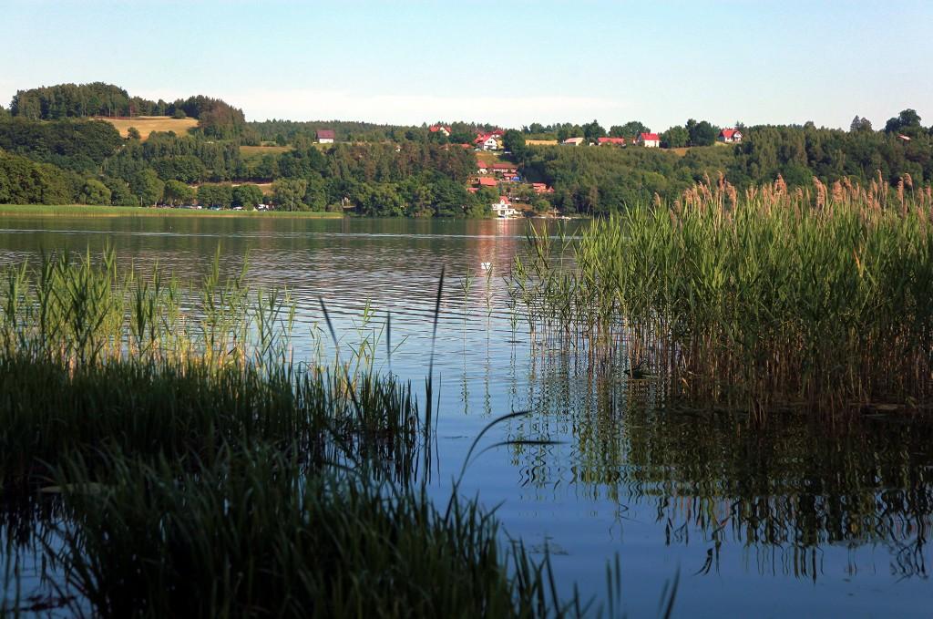 Zdjęcia: Chmielno, Jezioro Kłodno, Pomorskie, Szuwary, POLSKA