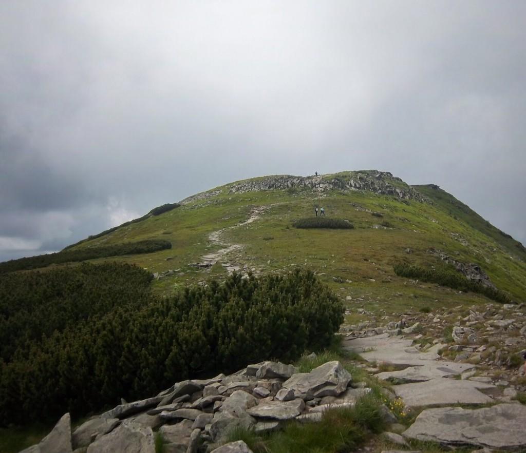 Zdjęcia: Babiogórski Park Narodowy, Zawoja , W drodze na Babią Górę , POLSKA