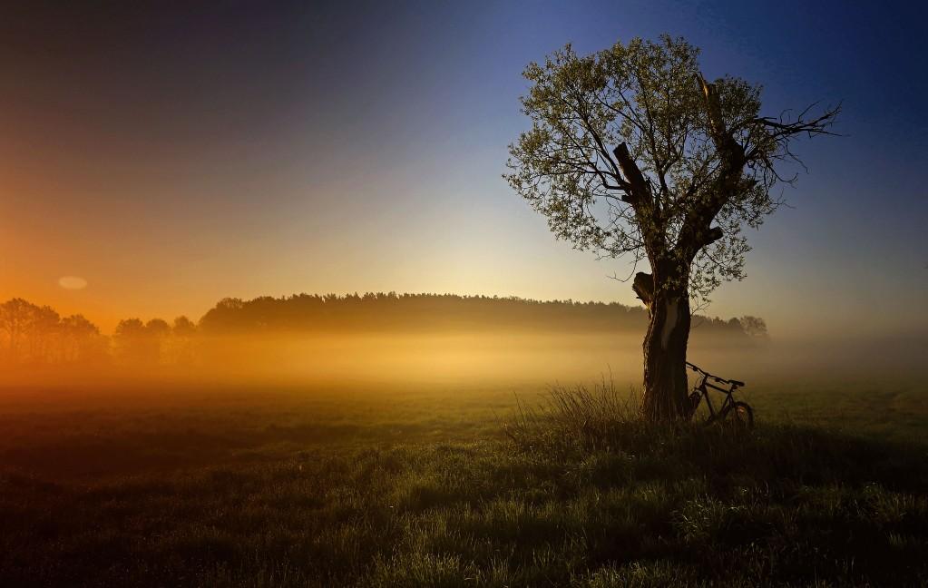 Zdjęcia: Dolina Noteci, pow-żniński,  Mgła nad łąkami, POLSKA