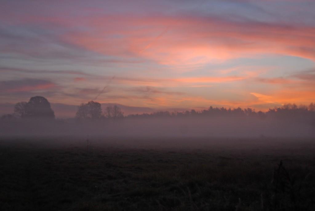 Zdjęcia: Gostyń, Górny Śląsk, Na skraju mgły, POLSKA