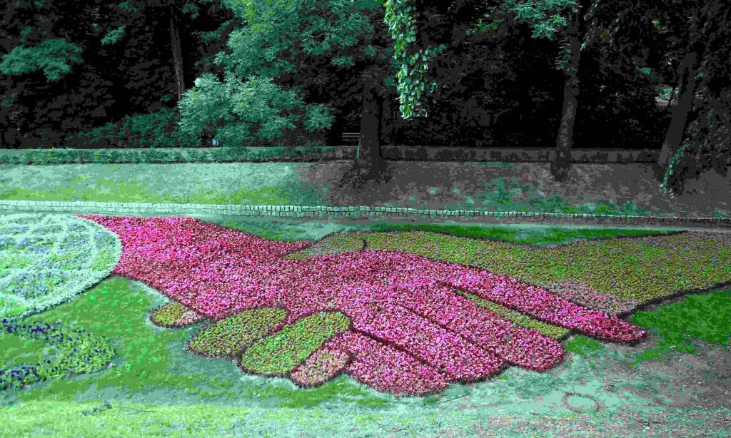 Zdjęcia: Park miejski, Chełmno, Kobierce kwiatowe, POLSKA