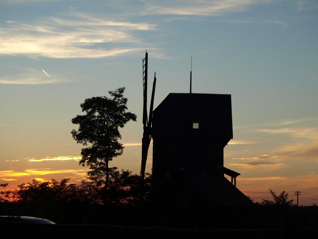 Zdjęcia: okolice Włoszakowic, Wielkopolska, walcząc z wiatrakami, POLSKA